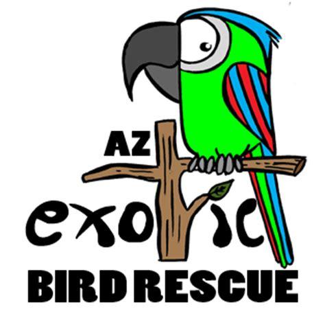 az exotic bird rescue tempe az