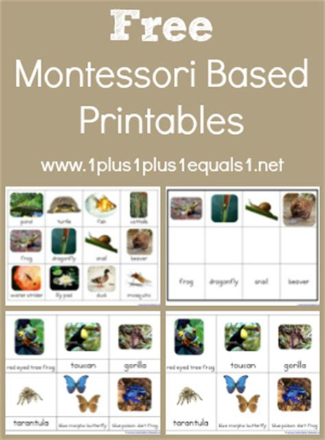 Free Printable Montessori Language Cards | 1 1 1 1 montessori printables