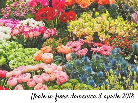 noale in fiore domenica 8 aprile noale in fiore con i piedi per terra