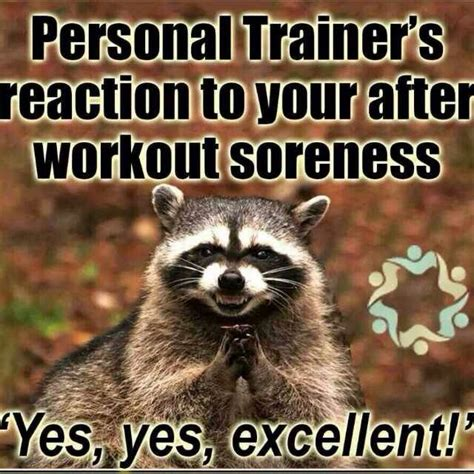 Trainer Meme - pin funny personal trainer jokes on pinterest free hd