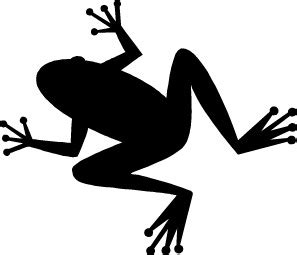 frog clipart black and white toad clipart black and white clipart panda free