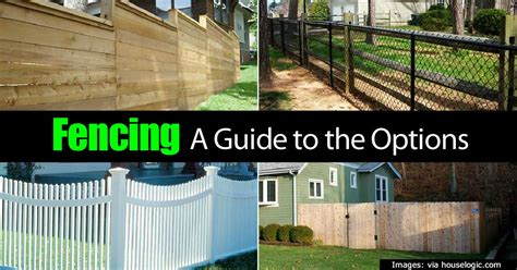 fencing options privacy screen ideas tips for creating privacy in your backyard