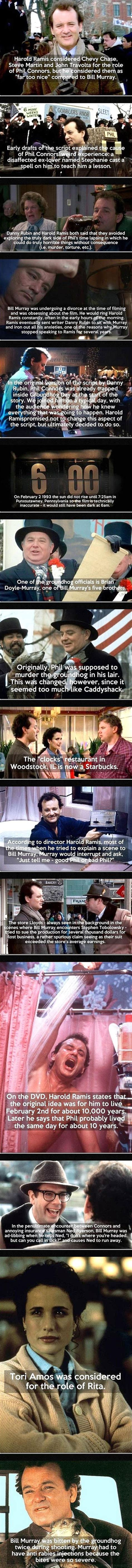 groundhog day fred 1000 ideas about groundhog day on