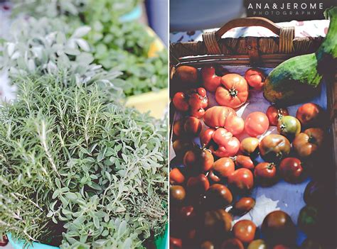 san jose organics directions san jose organic market cabo wedding photographers
