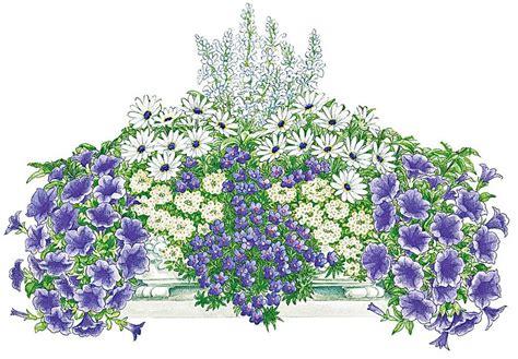 Blau Weißer Teppich by Balkonpflanzen Set 187 Blau Wei 223 Er Traum 171 Kaufen Otto