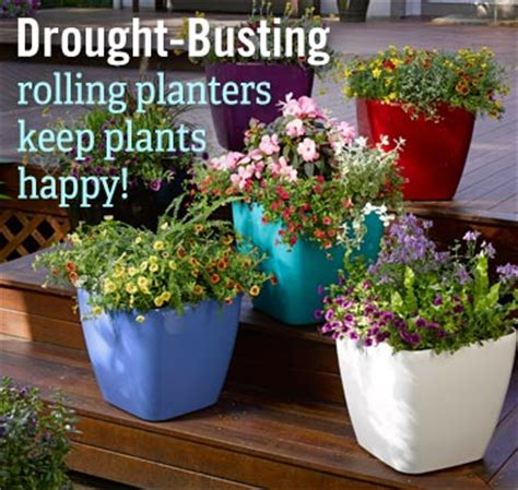 Planters Website by New Large Outdoor Planters Self Watering Pots