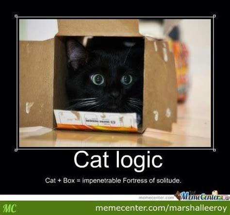 cat in a box memes catlogic cat box impenetrable