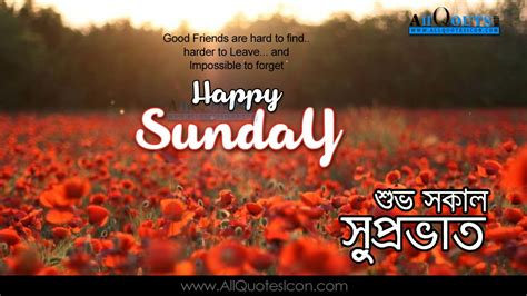 bengali good morning sms happy sunday images best bengali good morning quotes
