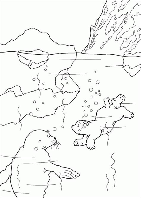 Little Polar Bear Coloring Pages Coloringpagesabc Com Polar Color Page