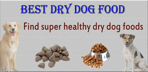 dog health dogs ehow ehow how to discover the dry dog food find super healthy dry foods for your dog