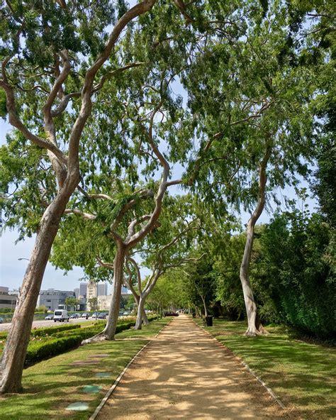 Beverly Garden Park by A Wonderful Spot In Beverly To Walk Or Jog Beverly Gardens Park