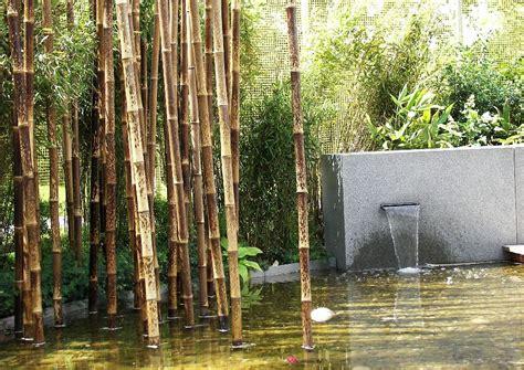 kontrast von bambus beton und wasser