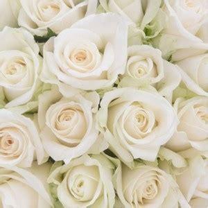 themes in rose blanche contes pour enfants le langage des fleurs r 224 z 224 lire
