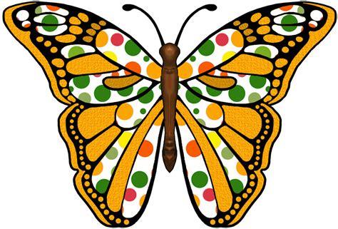 clipart butterfly green butterfly clipart clipart