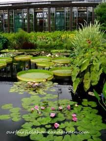 longwood gardens kennett square pa garden features