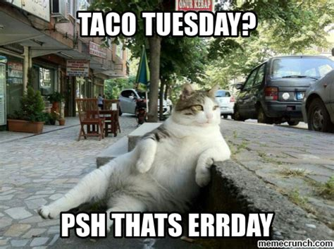 Tuesday Memes Funny - taco tuesday