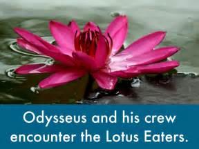 Odyssey Lotus Flower Odysseus Lotus Flower Www Galleryhip The Hippest Pics
