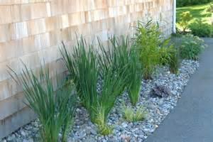 River Rock Garden Ideas The World S Catalog Of Ideas