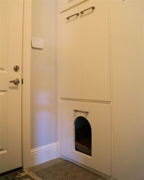 cat bathroom door 16 best images about kitty litter laundry room on