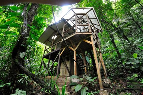 Tree Houses For Sale by Sustainable Treehouse Community In Costa Jungle