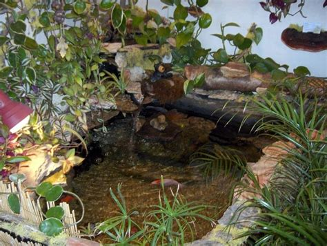 Design Backyard Garden Pretty And Small Backyard Fish Pond Ideas At Decor