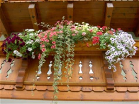 Bis Wann Garten Winterfest Machen by Balkonpflanzen Winterfest Machen 5 Wichtige Tipps