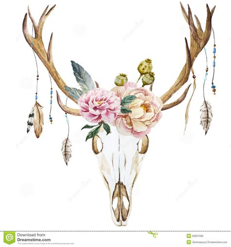 watercolor deer head with wildflowers stock vector image