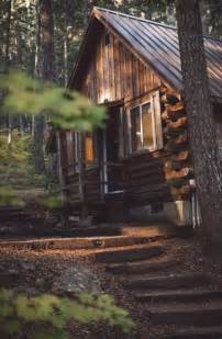 tranquil log cabin in the woods cabin for roses
