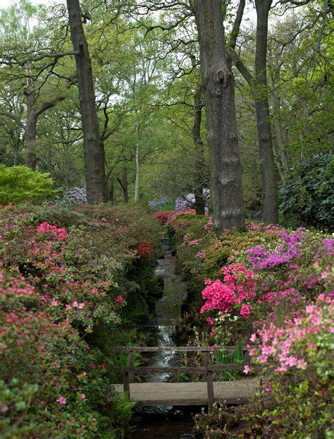 richmond park wikipedia