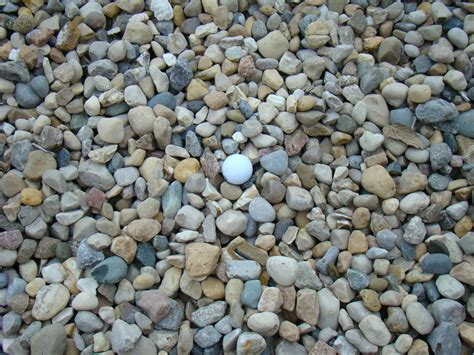 Decorative Stones India by River Rock Www Imgkid The Image Kid Has It