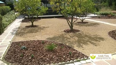 drought tolerant backyard designs top with beautiful