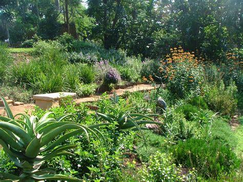 indigenous south garden search garden