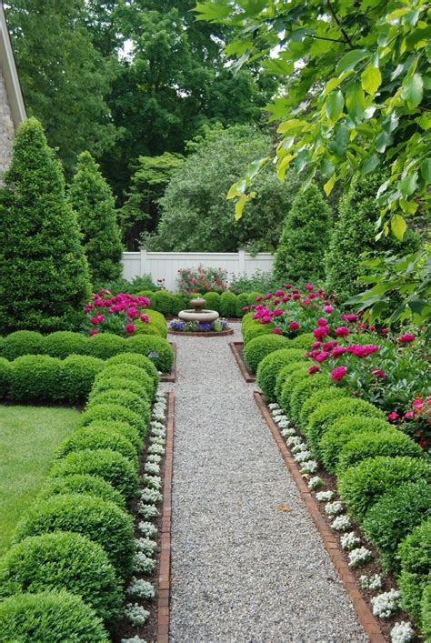 boxwoods galore in our courtyard best boxwood landscaping ideas on pinterest driveway garden