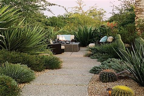 desert landscaping ideas garden outdoor