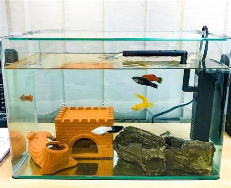 Jual Lu Hias Aquarium harga aquarium ikan hias surabaya denah rumah