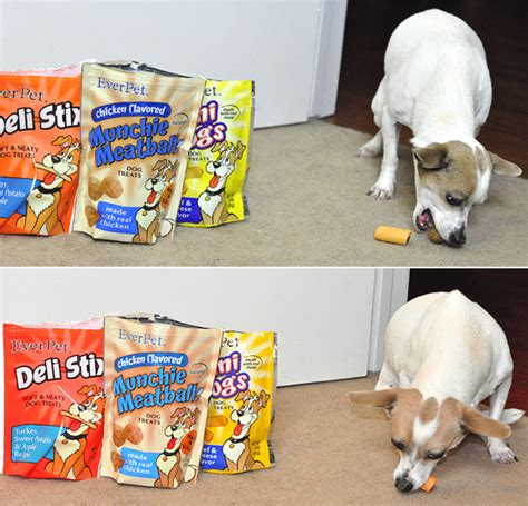 everpet food save some money on treats food with everpet dollargeneral our ordinary