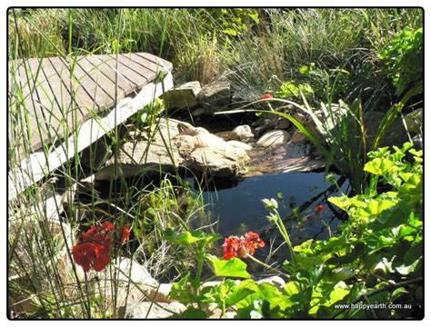backyards for wildlife 17 best images about wildlife pond on gardens backyard ponds and happy earth