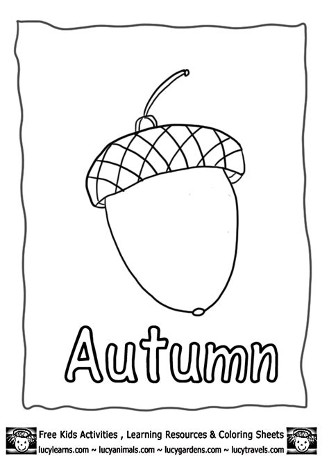 acorn coloring page printable acorn coloring pages for kids coloring home