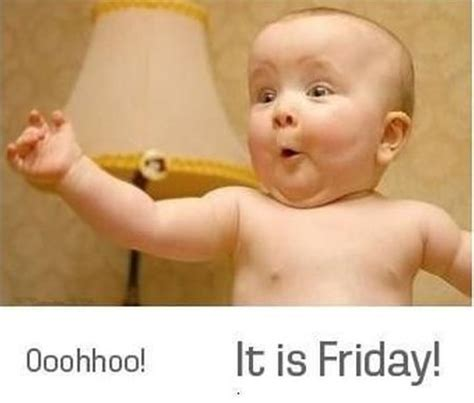 Its Friday Funny Meme - and there s more have a wonderful friday