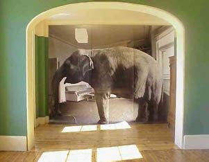 Elephant In Living Room by A Pastor S Cancer Diary October 14 2014 Hospice And