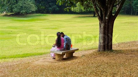 lovers on a park bench young lovers in the park stock photo colourbox