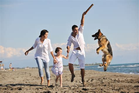 family puppy pets can improve your health healthy central florida