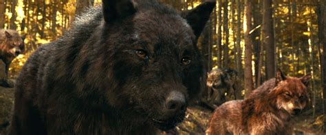 Saga Of The Wolf what entrepreneurs can learn from wolves