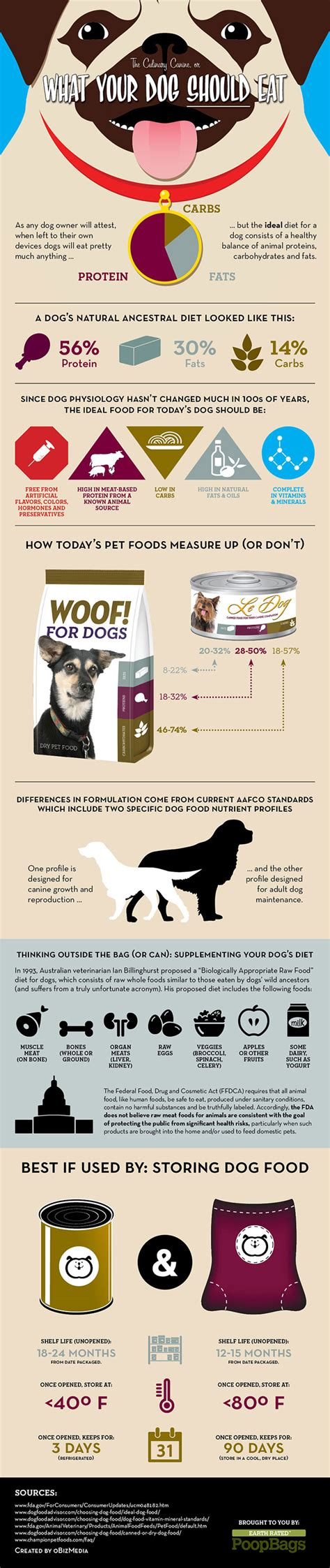 what should puppies eat infographic what dogs should eat bad sydney can t read keep the wagging