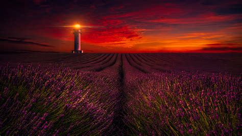 sunset lavender field lighthouse  wallpapers hd