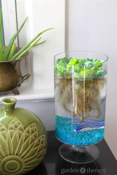 an eerily beautiful indoor water garden garden therapy