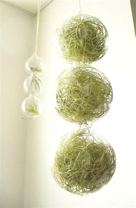 haengende pflanzgefaesse kuebel fuer raumgestaltung mit