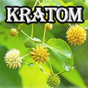 Kratom Detox Phenibut by Green Kratom Opiate Withdrawal Kratom Powder