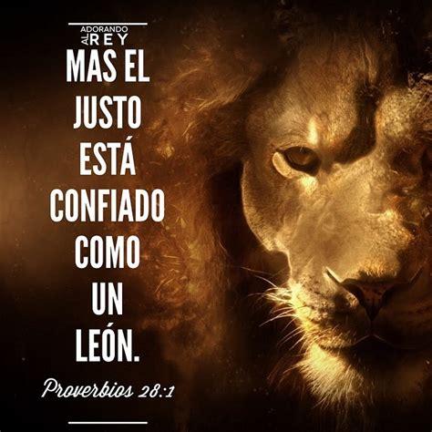 imagenes de leones con frases cristianas adorando al rey el justo esta confiado como un le 243 n