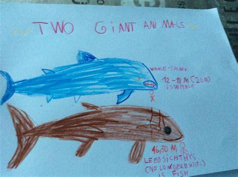 blue whale vs whale shark whale shark vs leedsichthys pok 233 charms